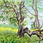 Old Tree with Chipmunk, Private Collection