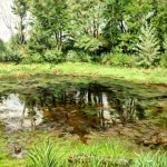 Pig Iron Pond, Oil on canvas, Private Collection
