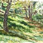 Wayne's Gulley, Watercolor