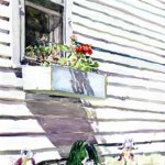 Window Box, Elm Ave. Watercolor 24 x 19