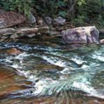 Loyalhanna Creek, Latrobe PA, Oil on canvas 25 x 30, Private Collection