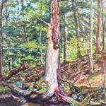 Shattered Tree II(Linn Runn) Oil on panel 18 x 30, Private Collection