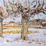 McConnaughey Farm Trees,  Oil on Panel 11 x 14