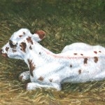 Longhorn Calf I, 2012     Oil on canvas, 8 x 10