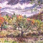 Apple Trees, The Catskills, 1994  Oil on panel, 18 x 25,