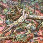 Fallen Log, 1982     Oil on canvas, 36 x 46