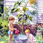 Two Sons and Sunflower, 1978     Oil on canvas, 46 x 36